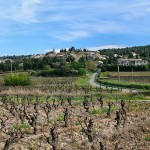 Rousillon wine