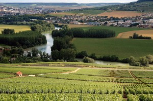 Champagne Vineyards by roblisameehan, on Flickr