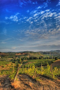 chianti, luce trasversale by francesco sgroi, on Flickr