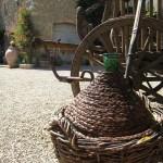 Klimat włoskiej winnicy